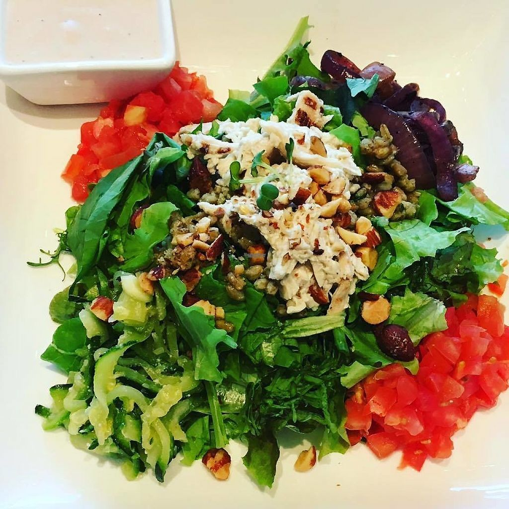 "Photo of Fresh Kitchen  by <a href=""/members/profile/community"">community</a> <br/>Vegetable Salad <br/> February 27, 2017  - <a href='/contact/abuse/image/81490/230914'>Report</a>"