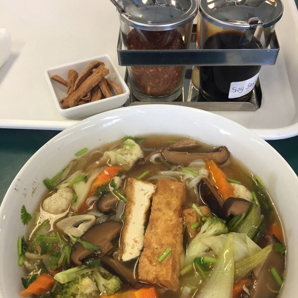 """Photo of CLOSED: Gifts from Heaven  by <a href=""""/members/profile/JekoBel"""">JekoBel</a> <br/>duck noodle soup <br/> March 27, 2017  - <a href='/contact/abuse/image/81503/241879'>Report</a>"""