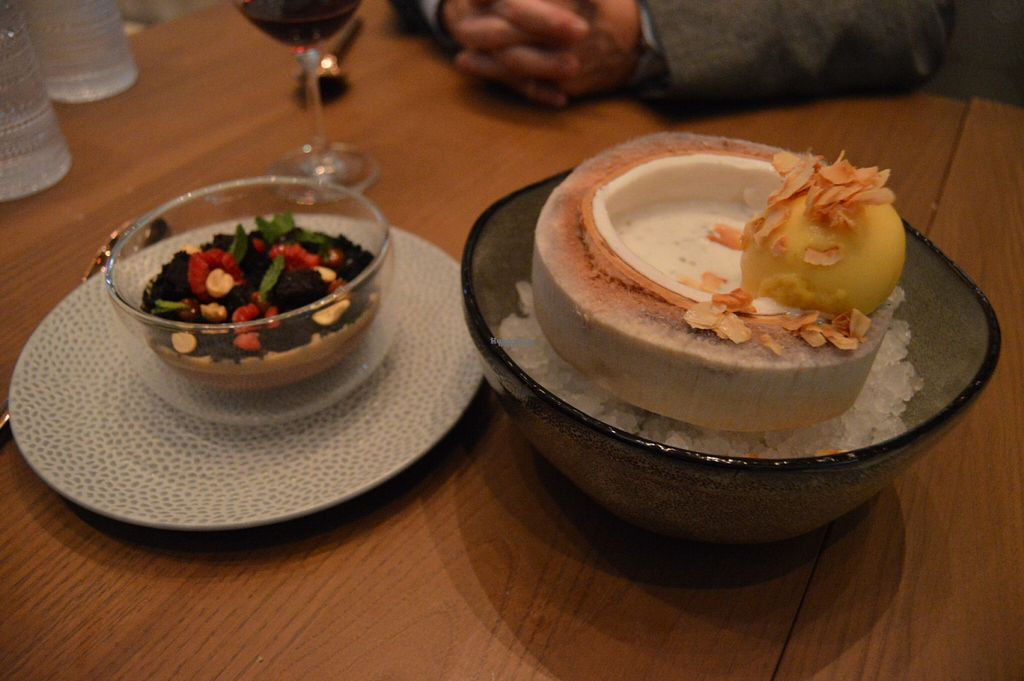 """Photo of Planta  by <a href=""""/members/profile/Vegan%20GiGi"""">Vegan GiGi</a> <br/>Chocolate terrarium with peanut butter cream, and coconut chia pudding with passion fruit sorbet (served inside a young Thai coconut).  <br/> October 20, 2016  - <a href='/contact/abuse/image/81537/183213'>Report</a>"""