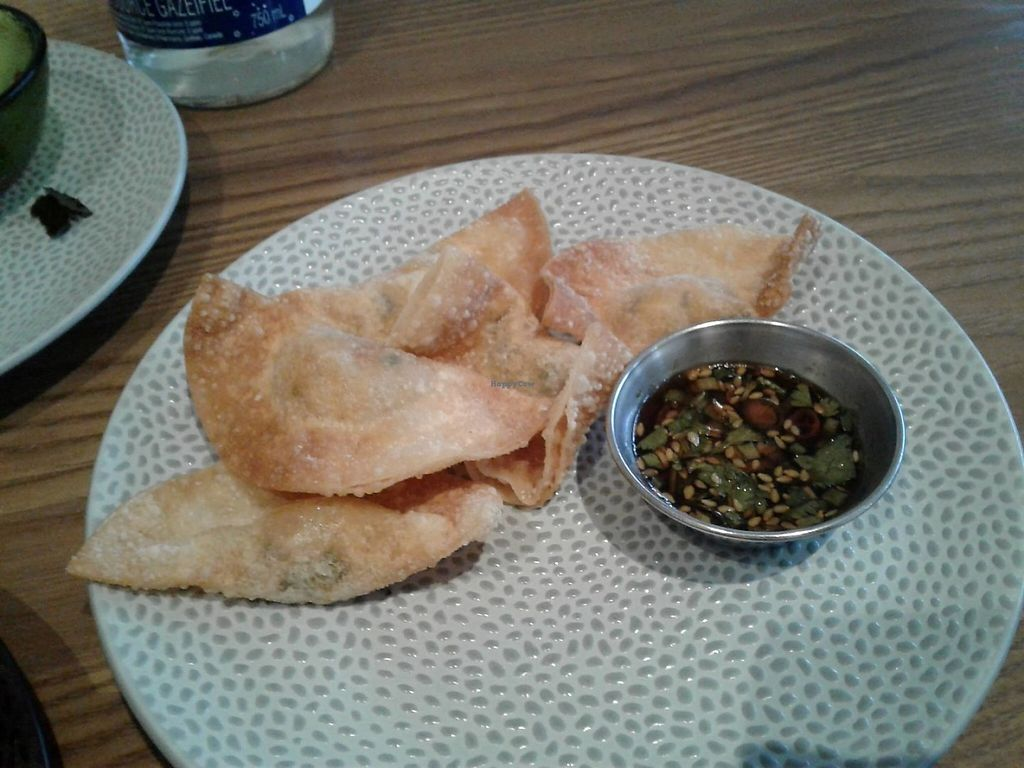 """Photo of Planta  by <a href=""""/members/profile/Pinelele"""">Pinelele</a> <br/>Fried Kimchi Dumplings <br/> May 21, 2017  - <a href='/contact/abuse/image/81537/261145'>Report</a>"""