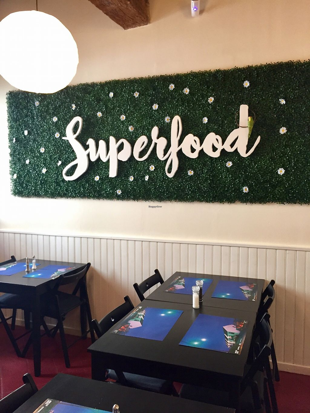 """Photo of Superfood  by <a href=""""/members/profile/amysworld"""">amysworld</a> <br/>Room in the back <br/> October 8, 2017  - <a href='/contact/abuse/image/81557/313329'>Report</a>"""