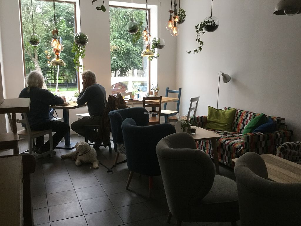 "Photo of KsiazKAwiarnia Rezerwat  by <a href=""/members/profile/Veggie%20Mama"">Veggie Mama</a> <br/>Lovely cafe room. Light and airy ☀️  <br/> July 17, 2017  - <a href='/contact/abuse/image/81582/281412'>Report</a>"