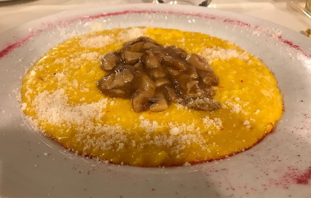 "Photo of Terrazza Metropole  by <a href=""/members/profile/ashwinn"">ashwinn</a> <br/>Risotto with mushroom and saffron  <br/> September 10, 2017  - <a href='/contact/abuse/image/81586/303055'>Report</a>"