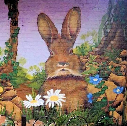"""Photo of Rabbit Vegan Cafe  by <a href=""""/members/profile/RabbitVeganCafe"""">RabbitVeganCafe</a> <br/>Part if our amazing mural by the remains of the ancient holy well of St Sidwell <br/> October 19, 2016  - <a href='/contact/abuse/image/81698/183023'>Report</a>"""