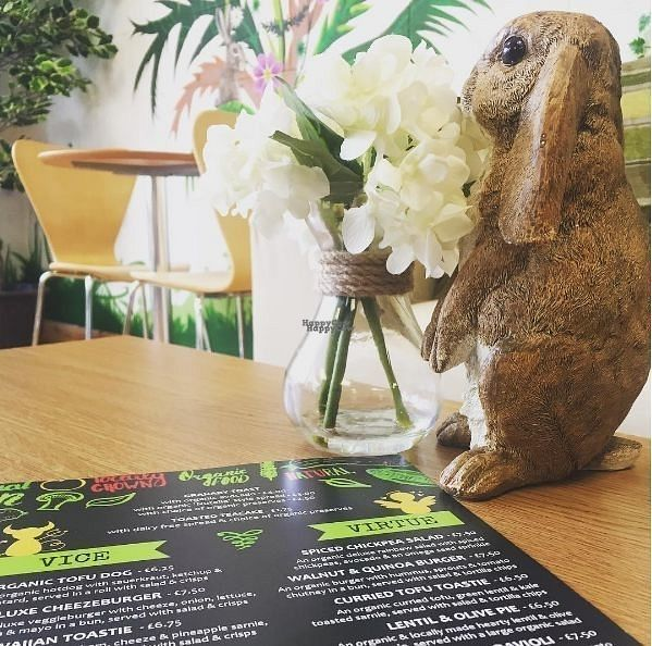 """Photo of Rabbit Vegan Cafe  by <a href=""""/members/profile/RabbitVeganCafe"""">RabbitVeganCafe</a> <br/>Inside <br/> October 19, 2016  - <a href='/contact/abuse/image/81698/183033'>Report</a>"""