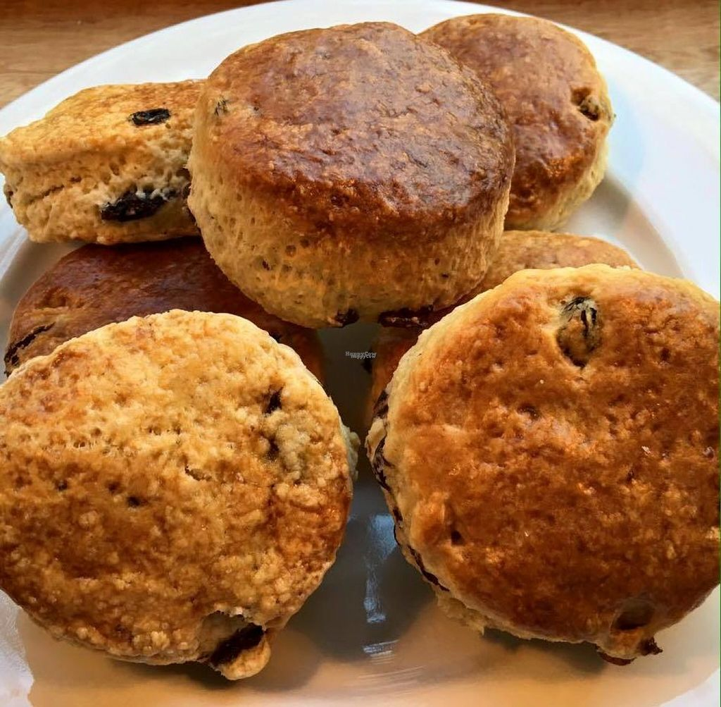 """Photo of Ma'Grecht  by <a href=""""/members/profile/community"""">community</a> <br/>scones  <br/> November 4, 2016  - <a href='/contact/abuse/image/81718/186521'>Report</a>"""