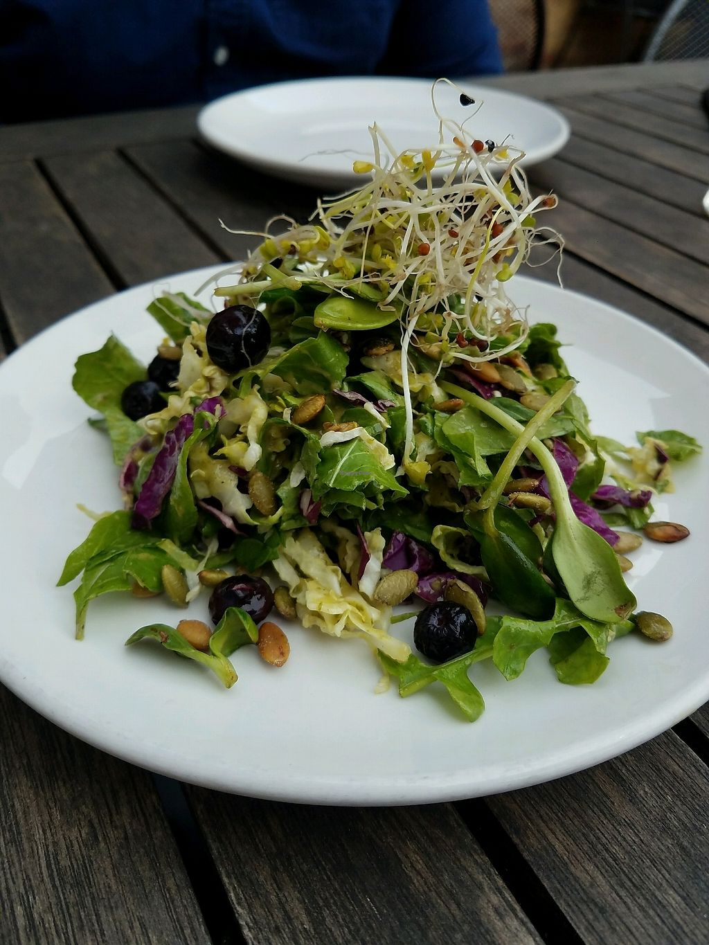 "Photo of Harvest Pizzeria  by <a href=""/members/profile/Silly%20Little%20Vegan"">Silly Little Vegan</a> <br/>Vegan salad option <br/> March 11, 2018  - <a href='/contact/abuse/image/81773/369395'>Report</a>"