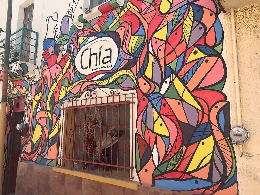 """Photo of Chia Fonda Vegana  by <a href=""""/members/profile/GaryBartlett"""">GaryBartlett</a> <br/>Colourful entrance in the middle of the street <br/> April 8, 2018  - <a href='/contact/abuse/image/81808/382682'>Report</a>"""