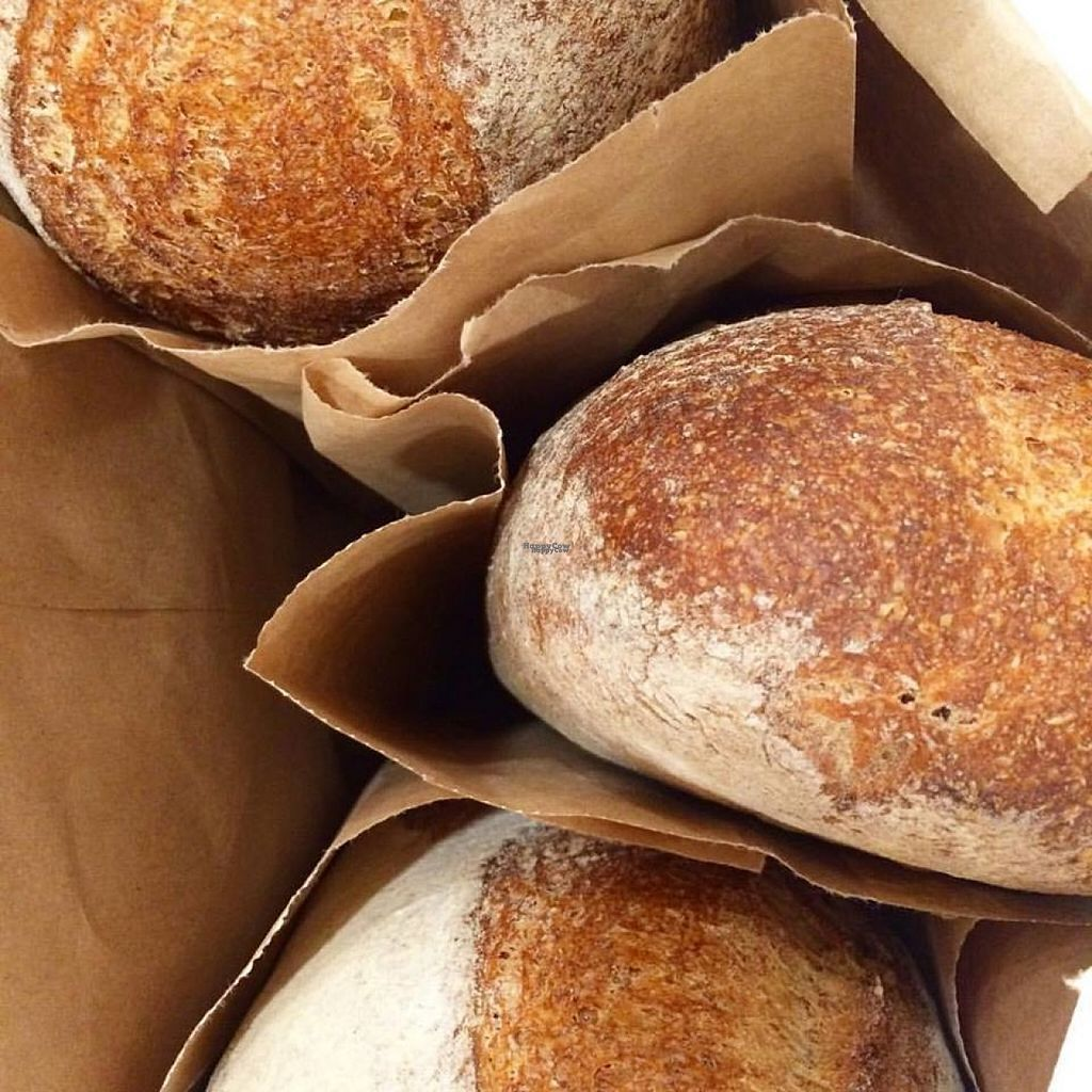 """Photo of Olive and Ruby Cafe  by <a href=""""/members/profile/community"""">community</a> <br/>freshly baked bread  <br/> November 3, 2016  - <a href='/contact/abuse/image/81814/186301'>Report</a>"""