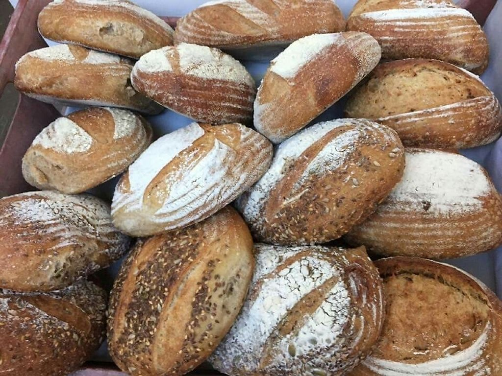 """Photo of The Organic Food Store   by <a href=""""/members/profile/community"""">community</a> <br/>The Organic Food Store Bread <br/> December 4, 2016  - <a href='/contact/abuse/image/81954/197109'>Report</a>"""