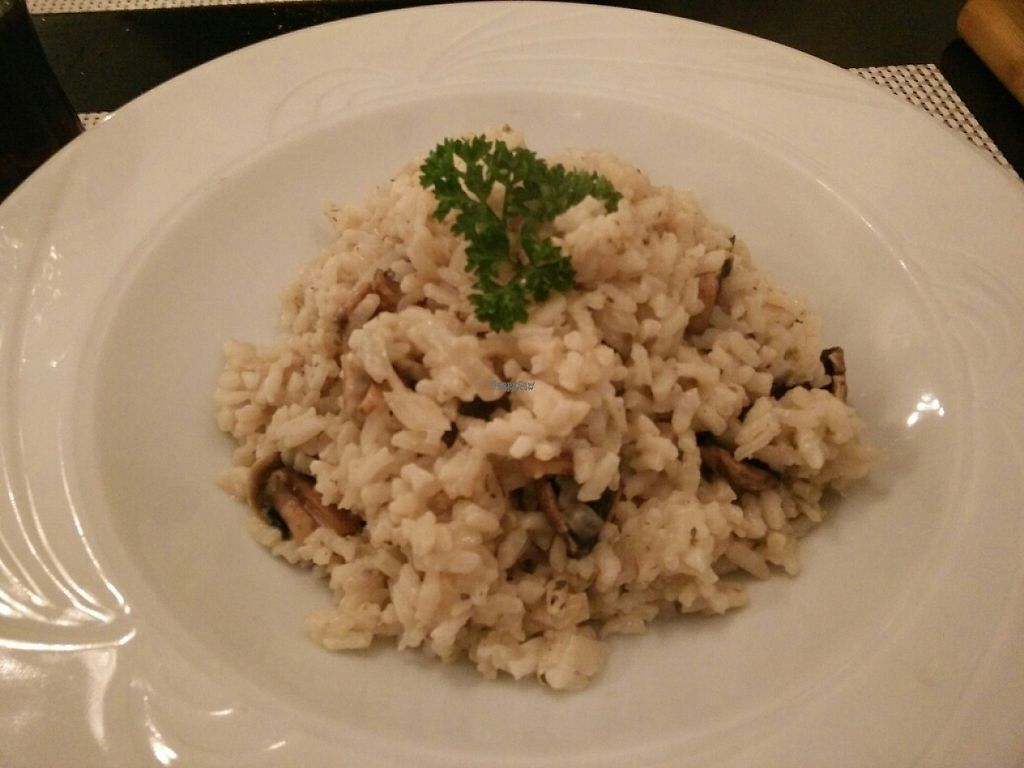 """Photo of Luna Rossa  by <a href=""""/members/profile/Meaks"""">Meaks</a> <br/>Mushroom and blue 'cheese' risotto <br/> November 13, 2016  - <a href='/contact/abuse/image/82014/189819'>Report</a>"""