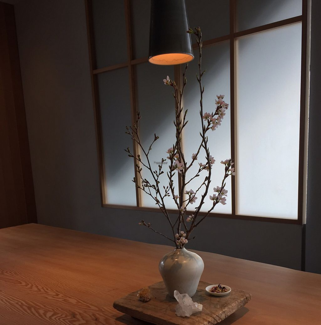 "Photo of Kousagisha Cafe  by <a href=""/members/profile/Hologram_Sam"">Hologram_Sam</a> <br/>beautiful  <br/> April 7, 2017  - <a href='/contact/abuse/image/82027/245384'>Report</a>"