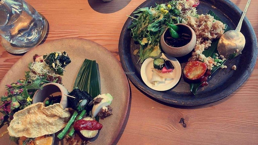 "Photo of Kousagisha Cafe  by <a href=""/members/profile/PaulaKollienGjerde"">PaulaKollienGjerde</a> <br/>Sampler plates <br/> April 13, 2017  - <a href='/contact/abuse/image/82027/247499'>Report</a>"