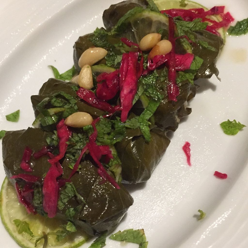 """Photo of Mezze Restaurant  by <a href=""""/members/profile/Eefie"""">Eefie</a> <br/>Stuffed grape leaves <br/> September 11, 2017  - <a href='/contact/abuse/image/82093/303390'>Report</a>"""