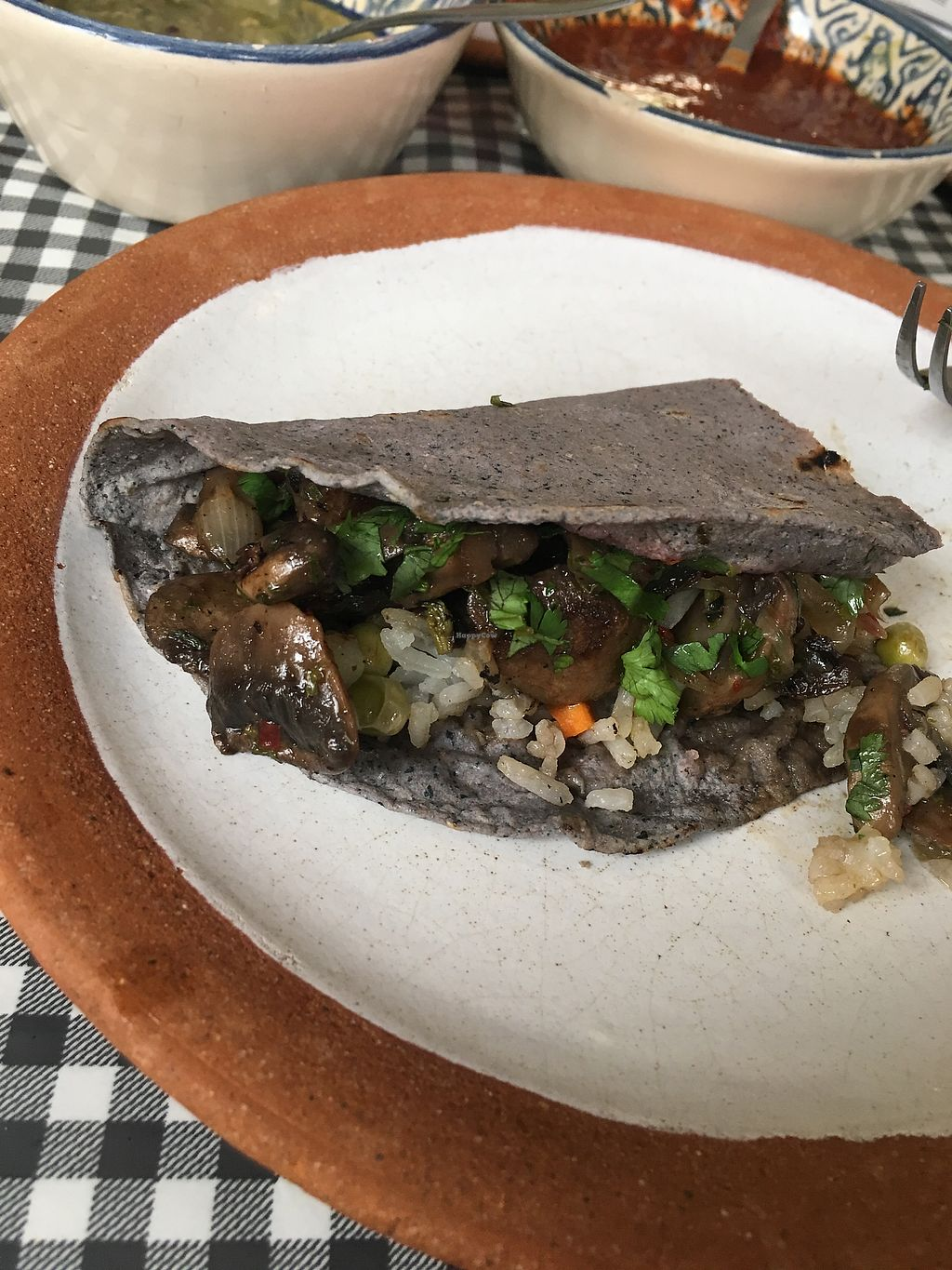 """Photo of Cabuche  by <a href=""""/members/profile/Cecilepages"""">Cecilepages</a> <br/>Asked for a mushroom taco and they did it :) <br/> September 9, 2017  - <a href='/contact/abuse/image/82103/302548'>Report</a>"""