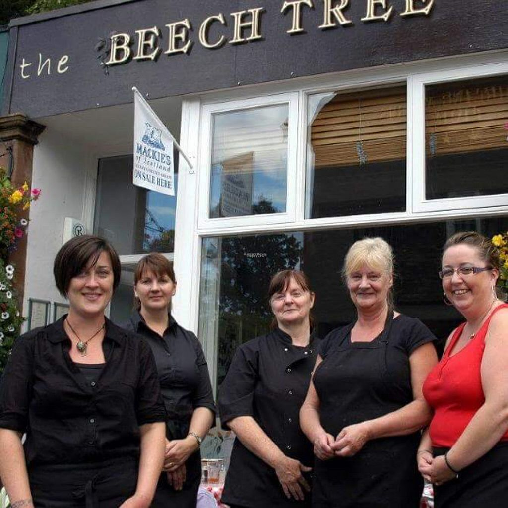 "Photo of Beech Tree Cafe  by <a href=""/members/profile/ScaryFairy"">ScaryFairy</a> <br/>Cafe  <br/> October 31, 2016  - <a href='/contact/abuse/image/82133/185686'>Report</a>"