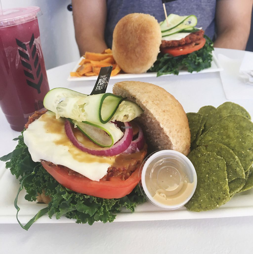 """Photo of fibrre  by <a href=""""/members/profile/kgamez"""">kgamez</a> <br/>Dallas burger with quinoa patty and vegan cheese <br/> December 16, 2016  - <a href='/contact/abuse/image/82169/201567'>Report</a>"""
