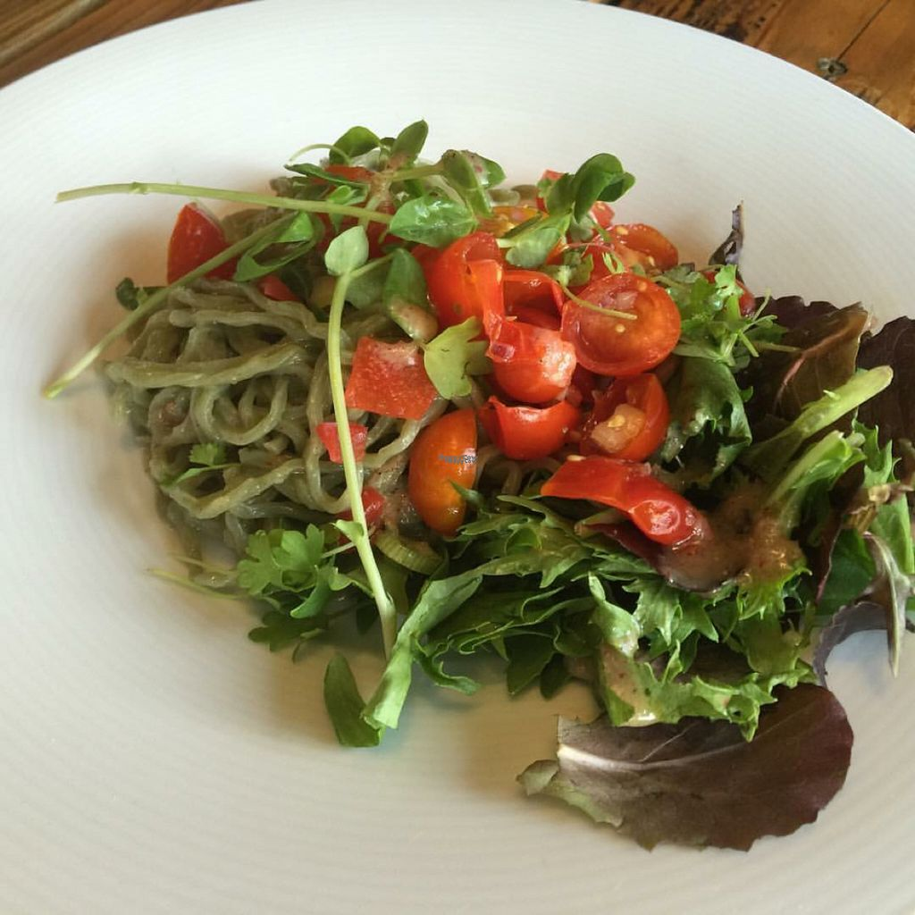 "Photo of The Whet Noodle   by <a href=""/members/profile/JessicaWaite"">JessicaWaite</a> <br/>cold ramen salad w/ vegan noodles, kombu vinaigrette  <br/> November 1, 2016  - <a href='/contact/abuse/image/82174/185888'>Report</a>"