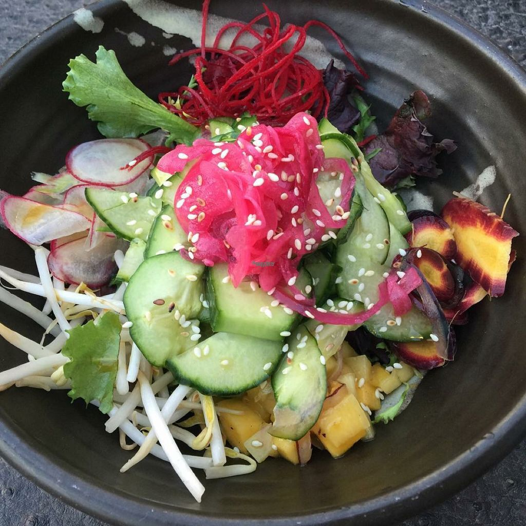 "Photo of The Whet Noodle   by <a href=""/members/profile/JessicaWaite"">JessicaWaite</a> <br/>cucumber salad  <br/> November 1, 2016  - <a href='/contact/abuse/image/82174/185890'>Report</a>"