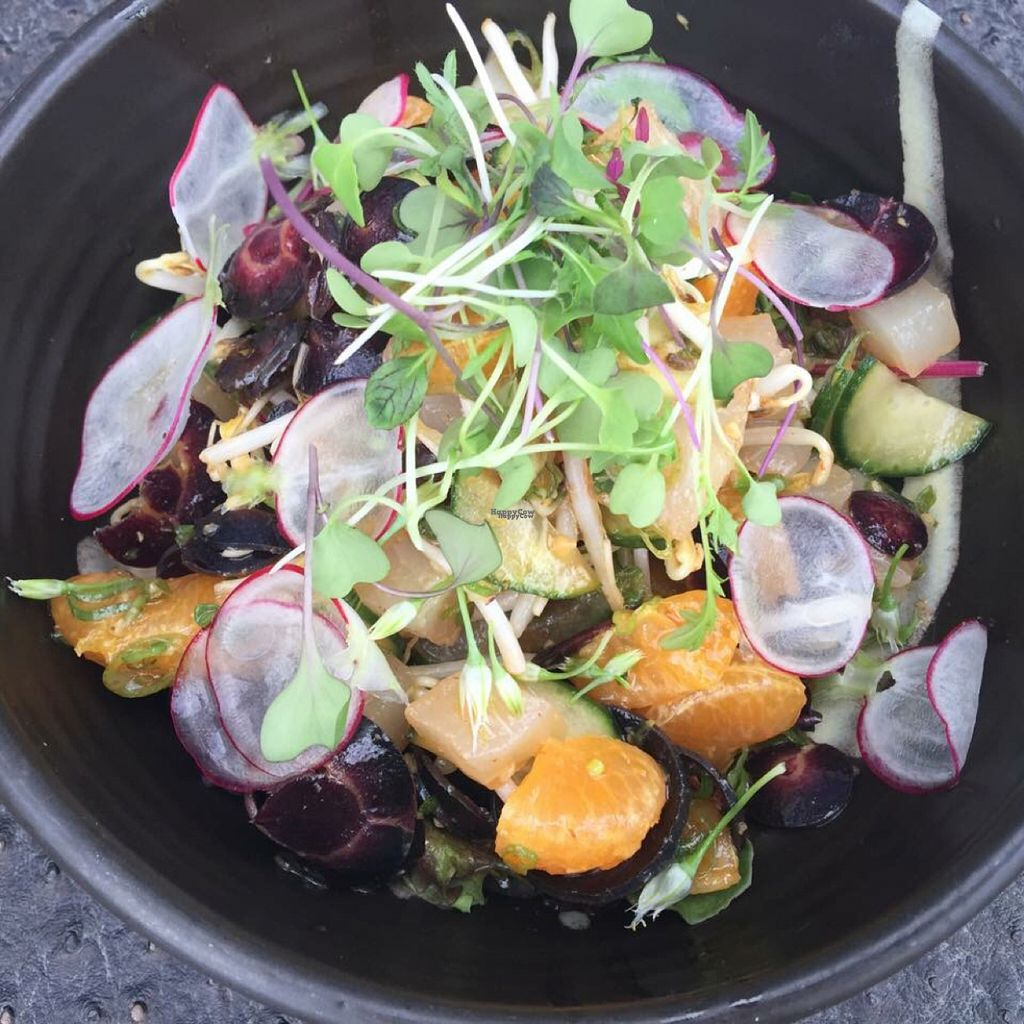 "Photo of The Whet Noodle   by <a href=""/members/profile/JessicaWaite"">JessicaWaite</a> <br/>avocado citrus salad  <br/> November 1, 2016  - <a href='/contact/abuse/image/82174/185892'>Report</a>"