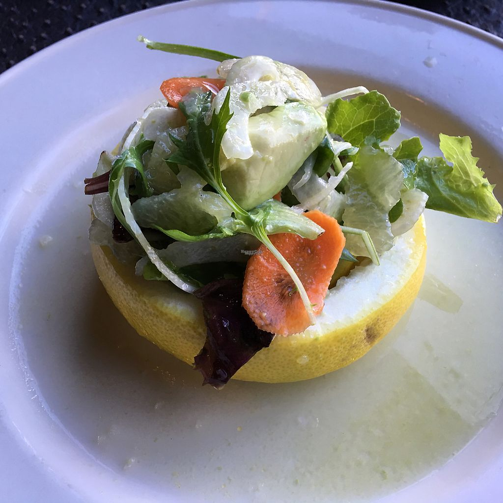 "Photo of The Whet Noodle   by <a href=""/members/profile/JessicaWaite"">JessicaWaite</a> <br/>Avocado citrus salad <br/> January 27, 2017  - <a href='/contact/abuse/image/82174/218011'>Report</a>"
