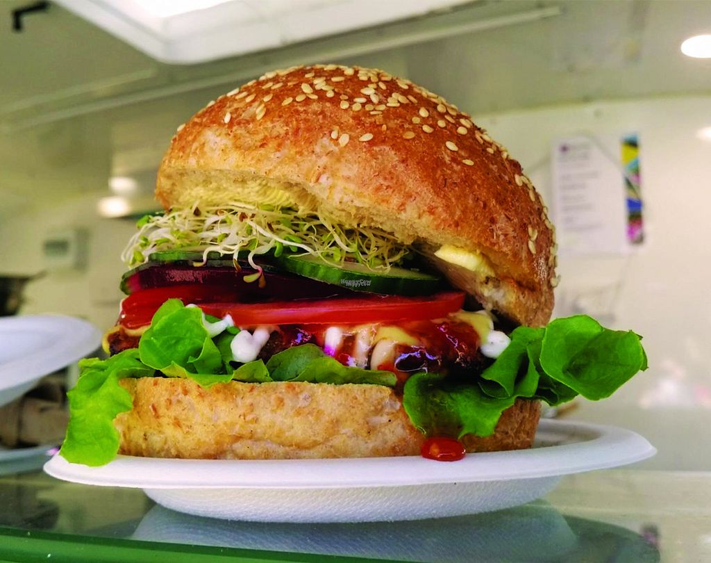 """Photo of Krishnas Kitchen  by <a href=""""/members/profile/KarunamayiDeviDasi"""">KarunamayiDeviDasi</a> <br/>Vegan Gourmet Burger. The perfect blend of salads, sauces and a tasty patty, even has the meat eaters raving about it! <br/> November 1, 2016  - <a href='/contact/abuse/image/82190/185736'>Report</a>"""