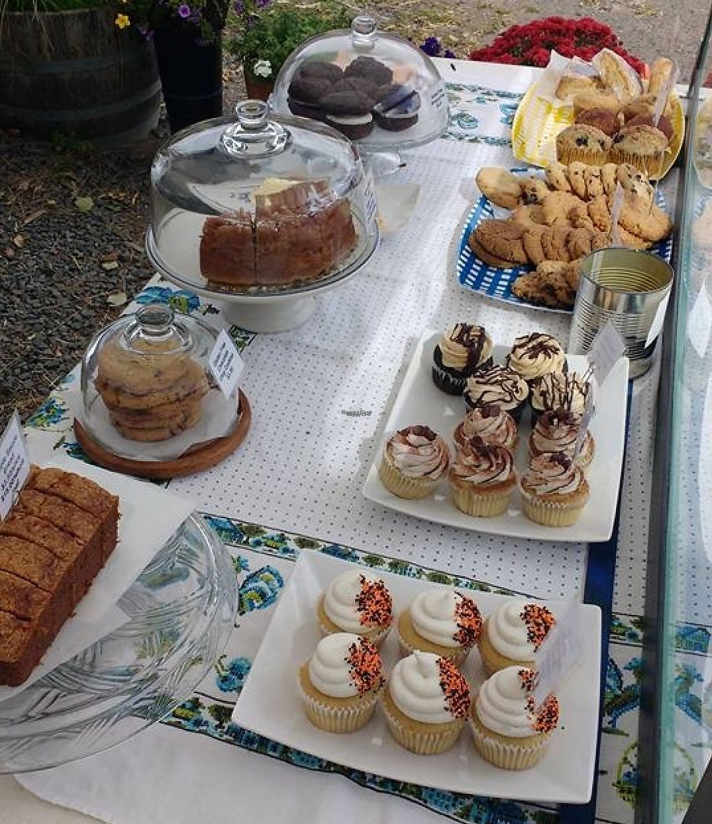 """Photo of Shoofly  by <a href=""""/members/profile/Shooflyveganbakery"""">Shooflyveganbakery</a> <br/>Table spread at sauvies island  <br/> November 1, 2016  - <a href='/contact/abuse/image/82236/221704'>Report</a>"""