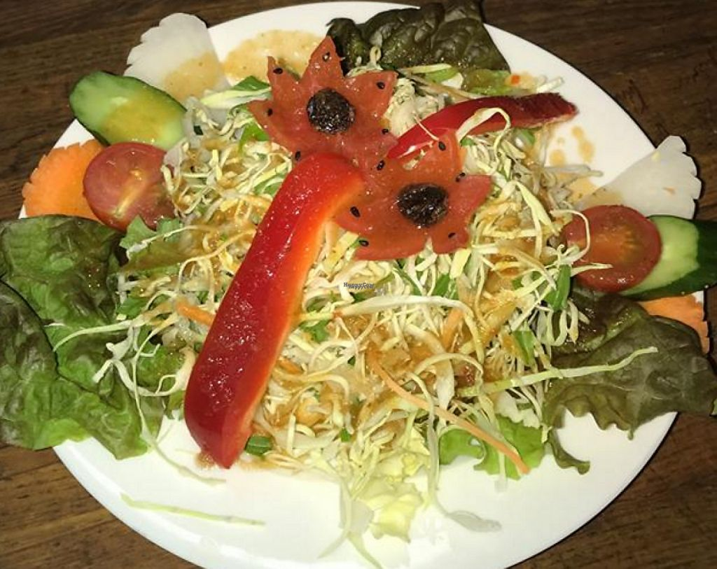 """Photo of Rasoi Indian Restaurant  by <a href=""""/members/profile/community"""">community</a> <br/>Vegetable Salad <br/> March 22, 2017  - <a href='/contact/abuse/image/82246/239455'>Report</a>"""
