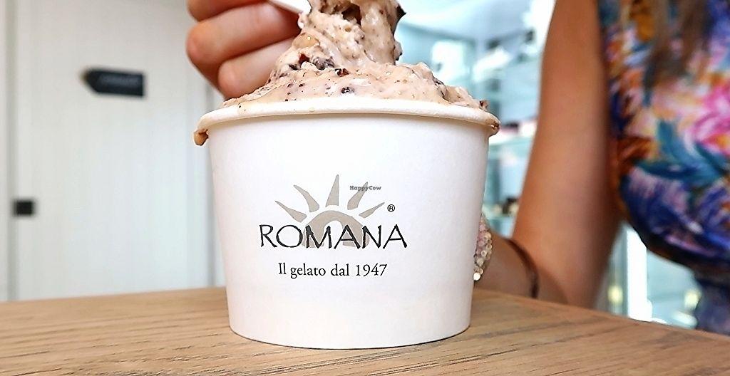 "Photo of Gelateria La Romana  by <a href=""/members/profile/AVeganVisit.com"">AVeganVisit.com</a> <br/>The vegan praline crunch gelato (drool) <br/> February 26, 2018  - <a href='/contact/abuse/image/82261/364221'>Report</a>"