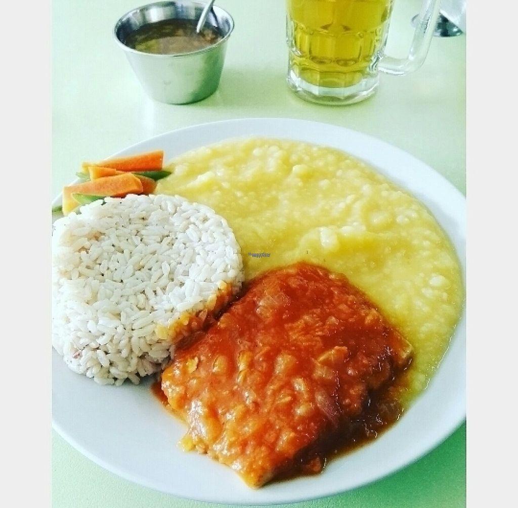 "Photo of Giordano Restaurant Vegetariano  by <a href=""/members/profile/AlexisVillarCastillo"">AlexisVillarCastillo</a> <br/>Asado de tofu c/puré <br/> March 4, 2017  - <a href='/contact/abuse/image/82387/232616'>Report</a>"