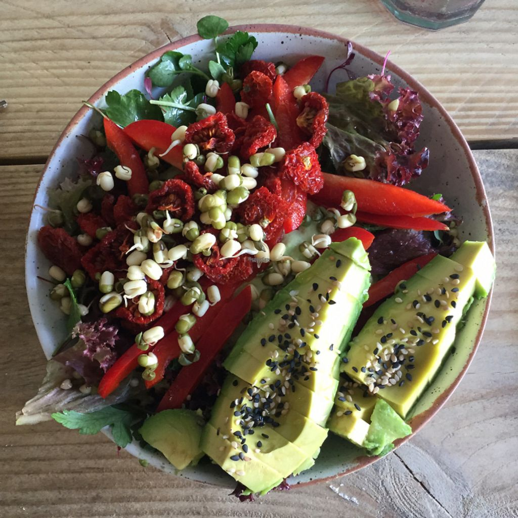 """Photo of The Plant Base  by <a href=""""/members/profile/MikeBracken"""">MikeBracken</a> <br/>Lunch bowl  <br/> April 2, 2017  - <a href='/contact/abuse/image/82471/244151'>Report</a>"""