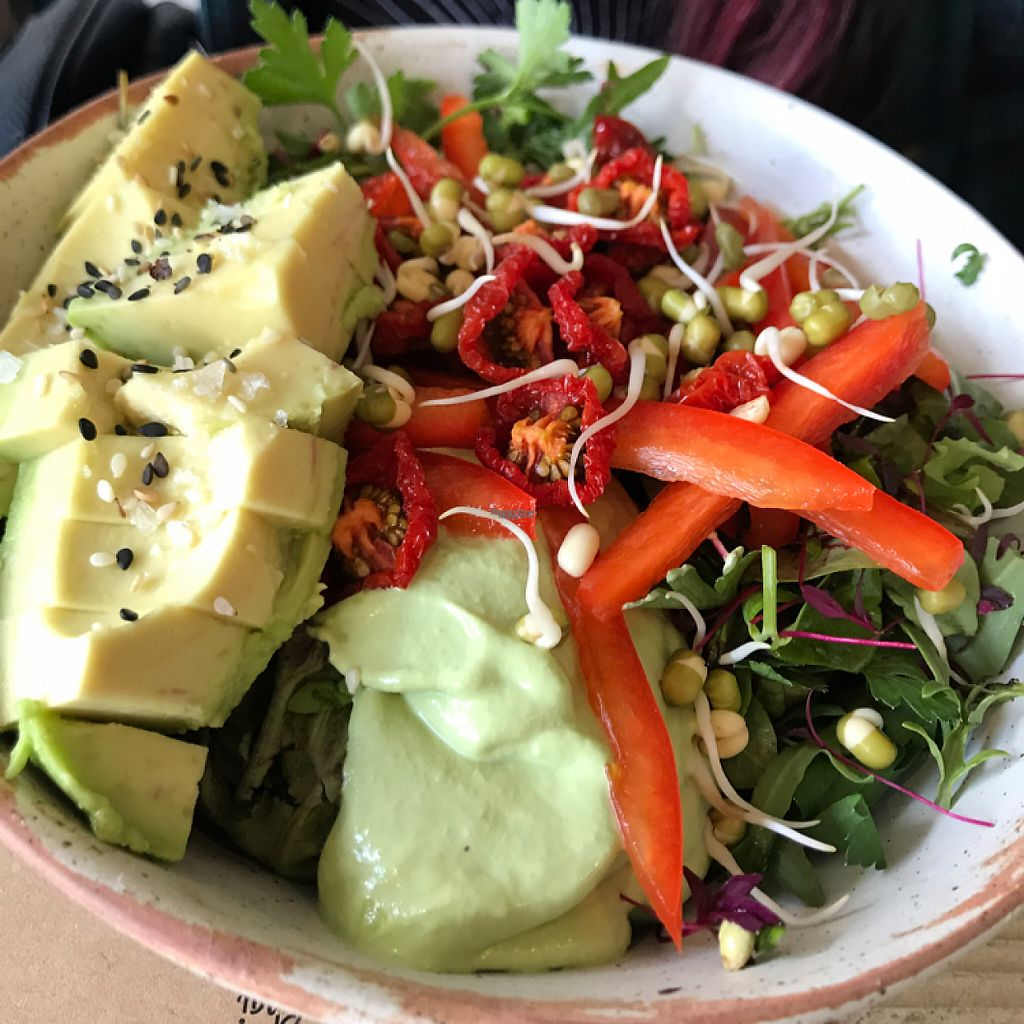 """Photo of The Plant Base  by <a href=""""/members/profile/joshDW92"""">joshDW92</a> <br/>Rice, dehydrated tomato, cashew horseradish sauce. Nom! <br/> April 30, 2017  - <a href='/contact/abuse/image/82471/254057'>Report</a>"""