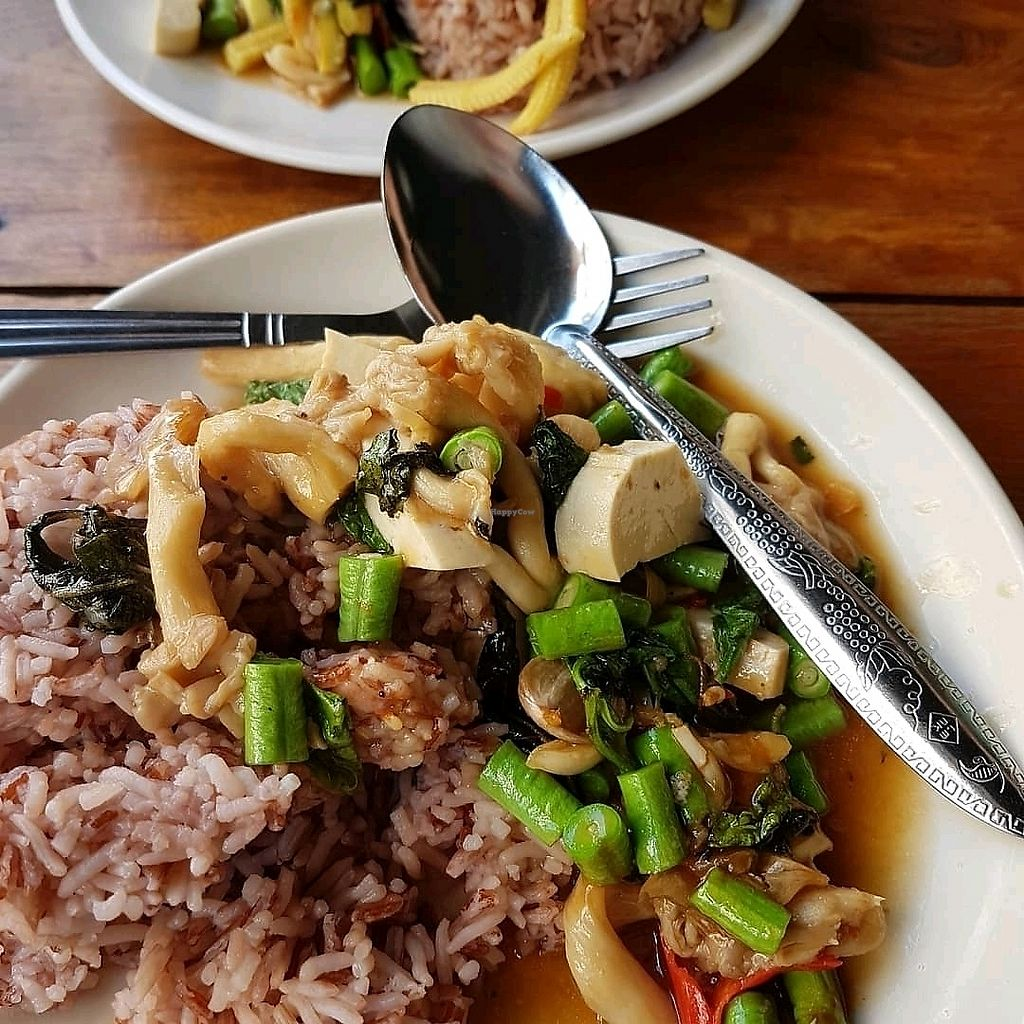 """Photo of Number 1 Vegetarian  by <a href=""""/members/profile/Blancherette"""">Blancherette</a> <br/>champigbon frit et riz brun <br/> March 5, 2018  - <a href='/contact/abuse/image/82483/367012'>Report</a>"""