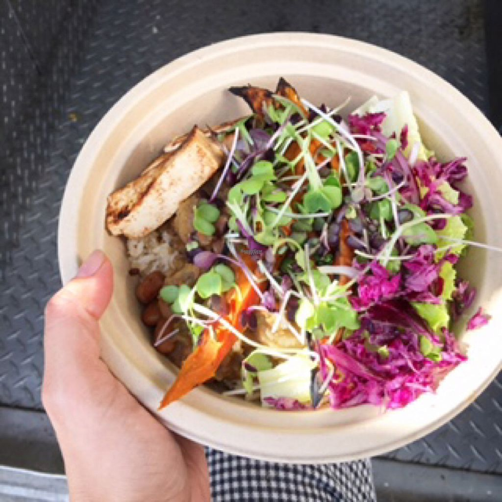 "Photo of Seahorse Republic Food Truck  by <a href=""/members/profile/JossieMunozManley"">JossieMunozManley</a> <br/>Turmeric grilled sweet potato bowl!  <br/> November 11, 2016  - <a href='/contact/abuse/image/82578/188368'>Report</a>"