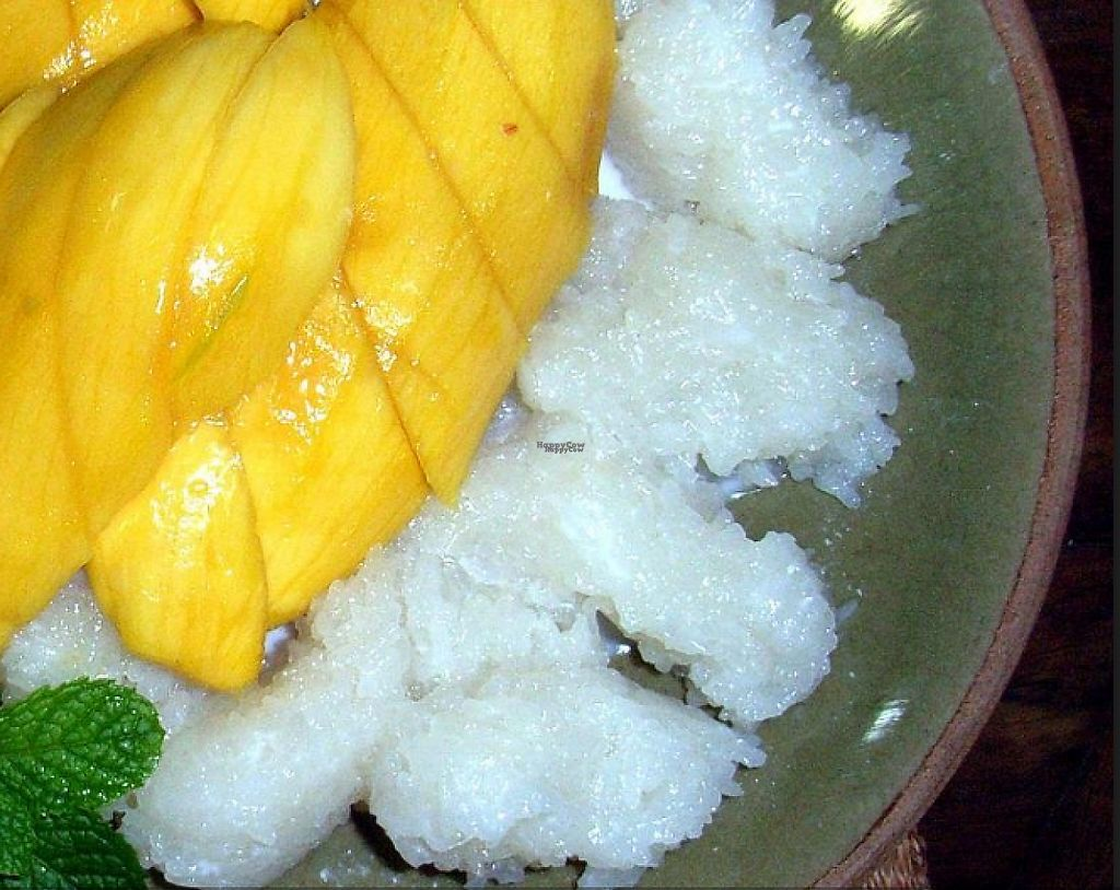 """Photo of Gecko Villa  by <a href=""""/members/profile/community"""">community</a> <br/>Coconut Rice and Mango <br/> March 5, 2017  - <a href='/contact/abuse/image/82598/232759'>Report</a>"""