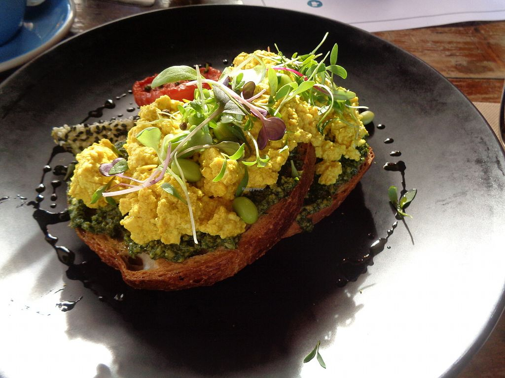 """Photo of Punnet Cafe  by <a href=""""/members/profile/citizenInsane"""">citizenInsane</a> <br/>scrambled tofu, pesto, sourdough <br/> July 16, 2017  - <a href='/contact/abuse/image/82709/280852'>Report</a>"""