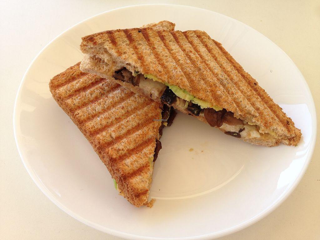 "Photo of Green Tara  by <a href=""/members/profile/NinaH%C3%B6fmann"">NinaHöfmann</a> <br/>Veggie Toast with Hummus, Avocado, Mushrooms and ""Cheese"" <br/> July 30, 2017  - <a href='/contact/abuse/image/82837/286737'>Report</a>"