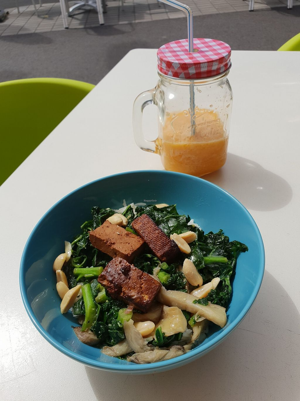 """Photo of Green Tara  by <a href=""""/members/profile/Plant_based_Jen"""">Plant_based_Jen</a> <br/>Smoothie and bowl of the day - white rice, tofu, kale and mushrooms <br/> March 29, 2018  - <a href='/contact/abuse/image/82837/377850'>Report</a>"""