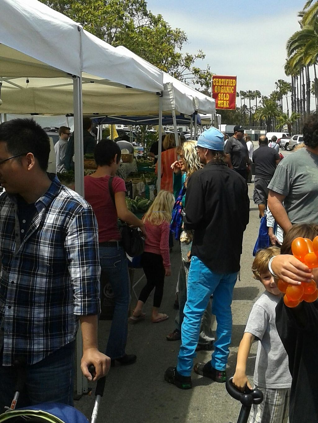 """Photo of Uptown Farmer's Market  by <a href=""""/members/profile/chobesoy"""">chobesoy</a> <br/>Organic veggies up and down <br/> April 13, 2014  - <a href='/contact/abuse/image/8283/193460'>Report</a>"""