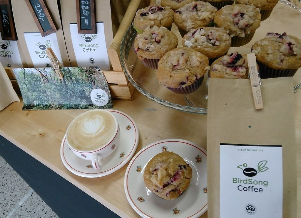 """Photo of BirdSong Coffee  by <a href=""""/members/profile/siedda7"""">siedda7</a> <br/>a delicious bird-friendly coffee with vegan cupcakes and  packed coffee beans on sale <br/> November 17, 2016  - <a href='/contact/abuse/image/82860/191237'>Report</a>"""