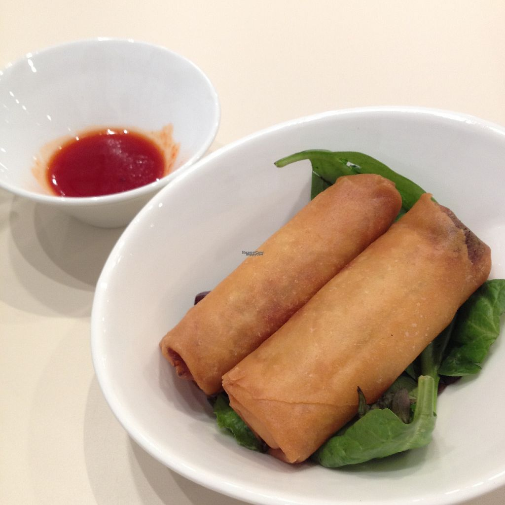 """Photo of VeGreen  by <a href=""""/members/profile/Chef%20Tigre"""">Chef Tigre</a> <br/>spring rolls with sweet chili sauce <br/> November 21, 2016  - <a href='/contact/abuse/image/82970/192819'>Report</a>"""