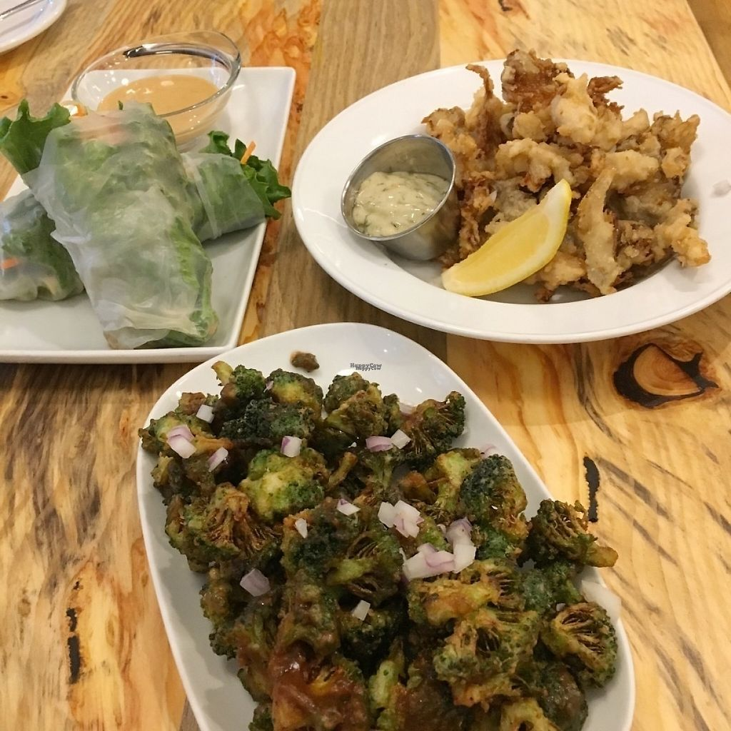 "Photo of The Arbor  by <a href=""/members/profile/vegan%20frog"">vegan frog</a> <br/>Rice rolls, fried oyster mushrooms, broccoli popcorn <br/> December 11, 2016  - <a href='/contact/abuse/image/83014/199205'>Report</a>"
