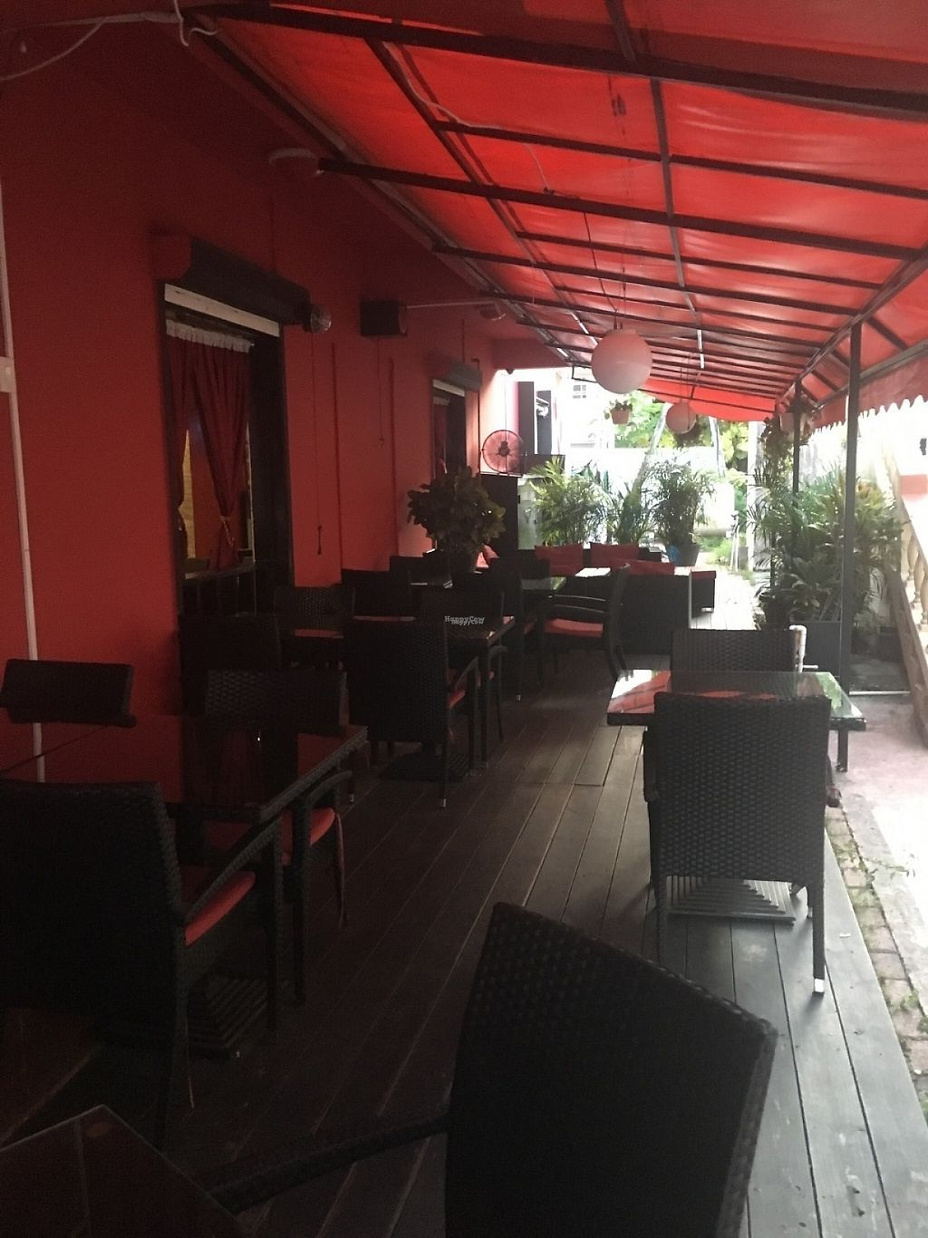"""Photo of Beirut SXM   by <a href=""""/members/profile/veganmom"""">veganmom</a> <br/>Plenty of outdoor seating <br/> November 21, 2016  - <a href='/contact/abuse/image/83023/192852'>Report</a>"""