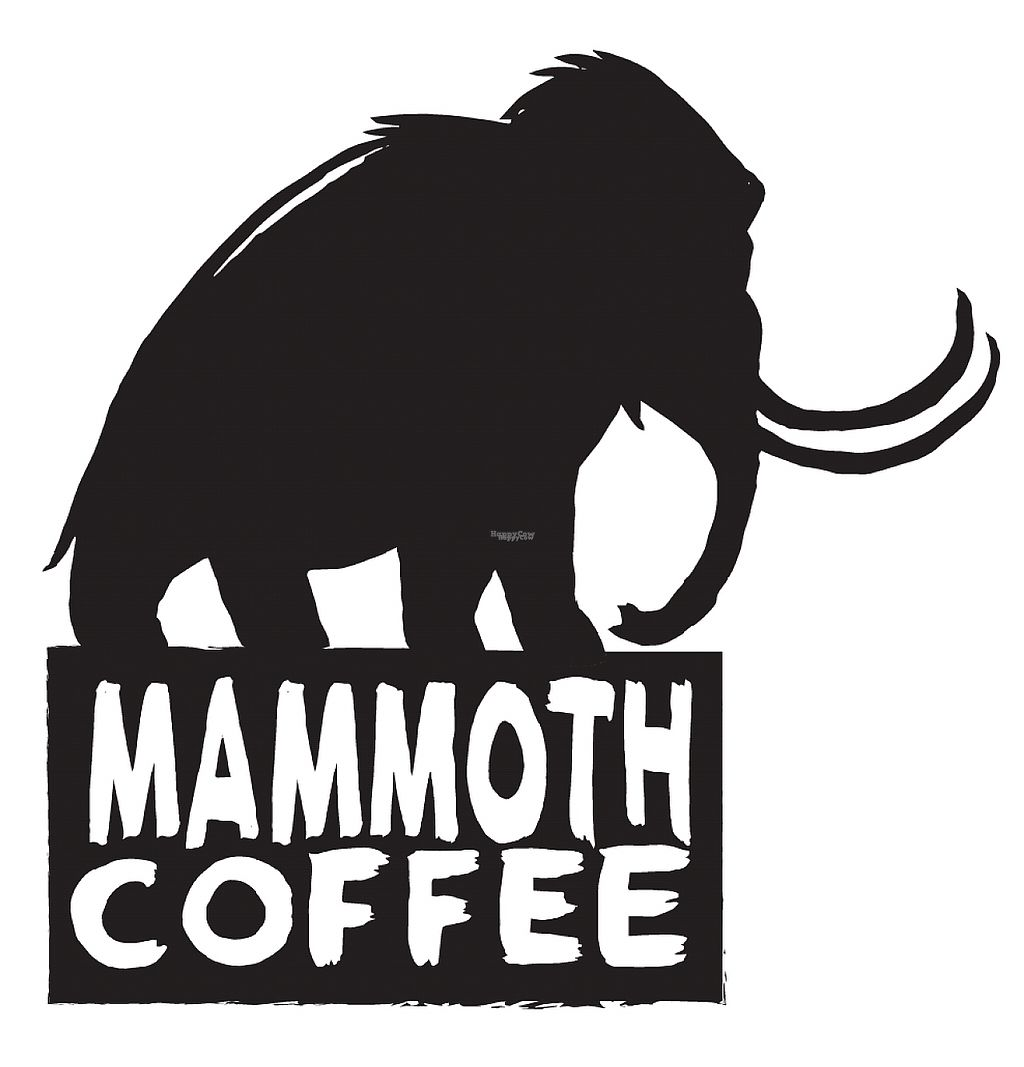 """Photo of Mammoth Coffee  by <a href=""""/members/profile/MammothCoffee"""">MammothCoffee</a> <br/>Mammoth Coffee Logo <br/> November 22, 2016  - <a href='/contact/abuse/image/83041/193039'>Report</a>"""