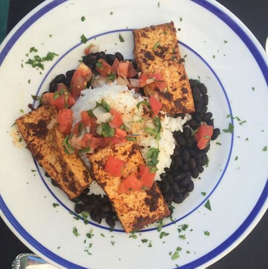 """Photo of River City Grill  by <a href=""""/members/profile/lerussell"""">lerussell</a> <br/>blackened tofu <br/> November 3, 2016  - <a href='/contact/abuse/image/8306/186467'>Report</a>"""