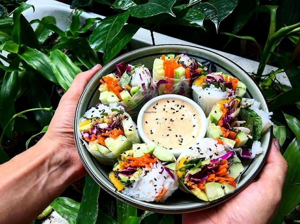 """Photo of Peace Food Cafe  by <a href=""""/members/profile/NeleTa"""">NeleTa</a> <br/>fresh summer rolls with peanutsauce!  <br/> December 5, 2017  - <a href='/contact/abuse/image/83116/332407'>Report</a>"""
