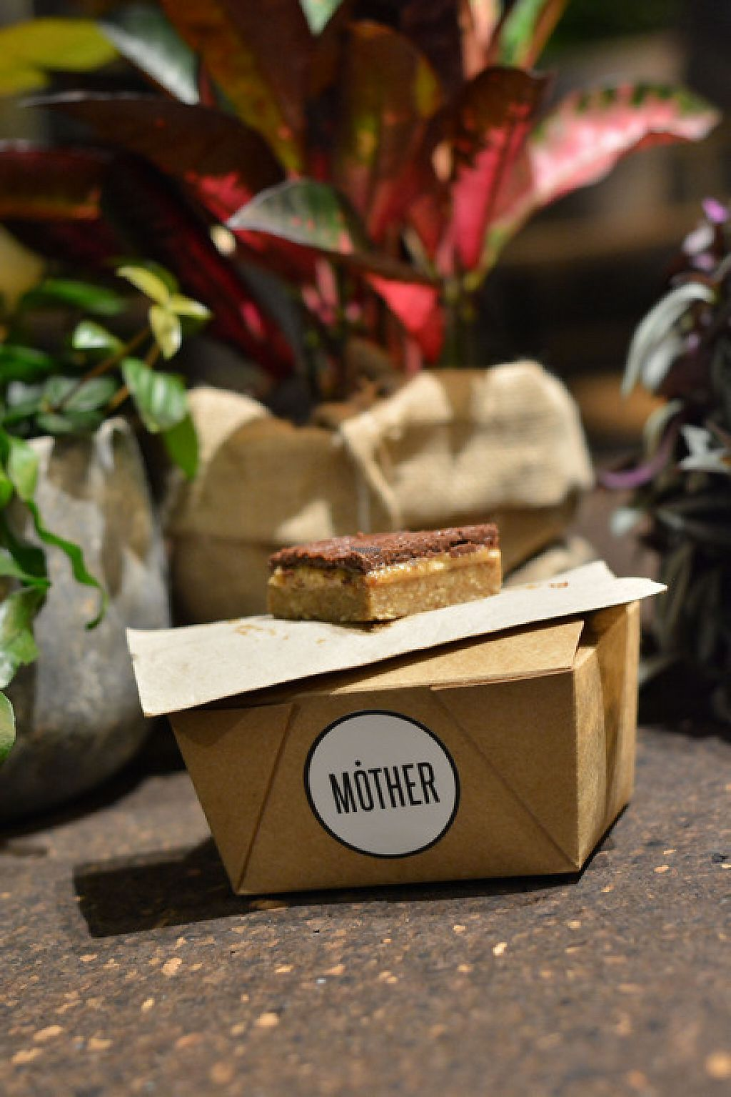 """Photo of MOTHER - Juice Works  by <a href=""""/members/profile/PatrickHill"""">PatrickHill</a> <br/>Salted Caramel Slice  (raw - tahini caramel - no dairy - no refined sugar - pure joy) <br/> November 28, 2016  - <a href='/contact/abuse/image/83205/195385'>Report</a>"""