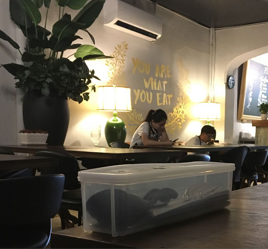 """Photo of Pinxin Vegan Cuisine  by <a href=""""/members/profile/Toristales"""">Toristales</a> <br/>waiters on their phones while I was waiting for my binl <br/> August 29, 2017  - <a href='/contact/abuse/image/83210/298551'>Report</a>"""
