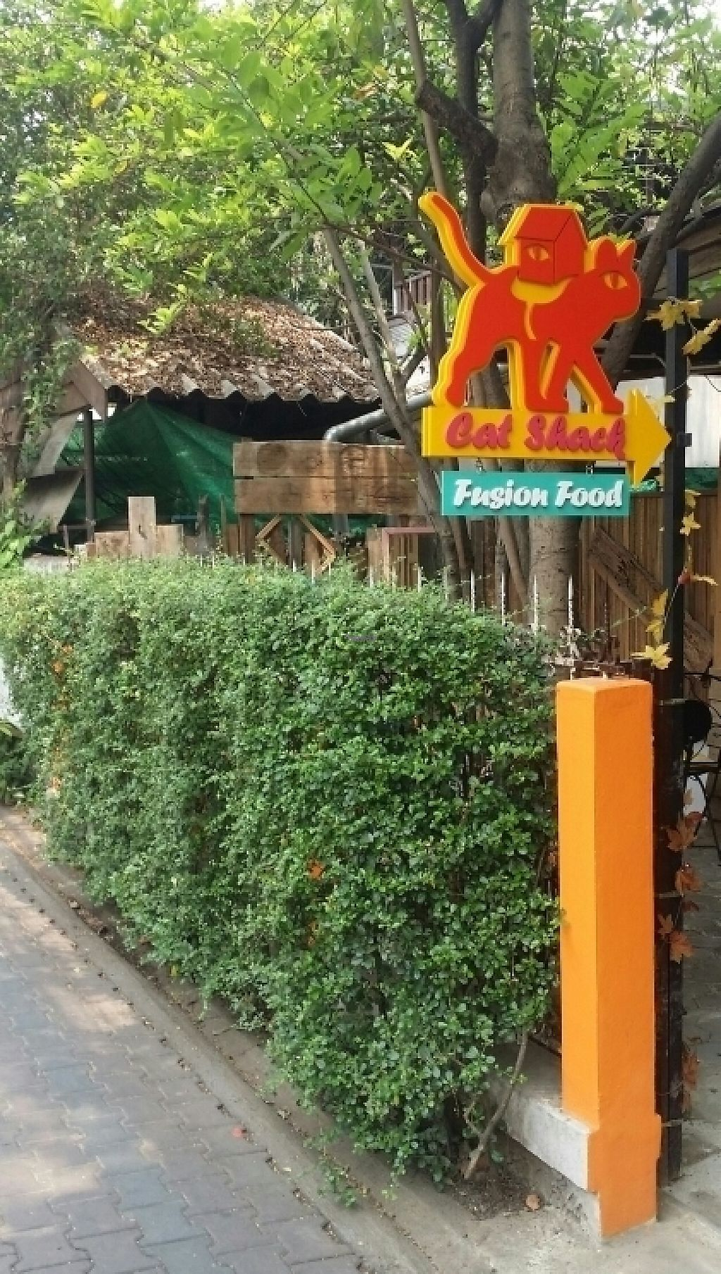 "Photo of Cat House Chiang Mai - Cat Shack  by <a href=""/members/profile/Mike%20Munsie"">Mike Munsie</a> <br/>street front <br/> April 9, 2017  - <a href='/contact/abuse/image/83233/246082'>Report</a>"