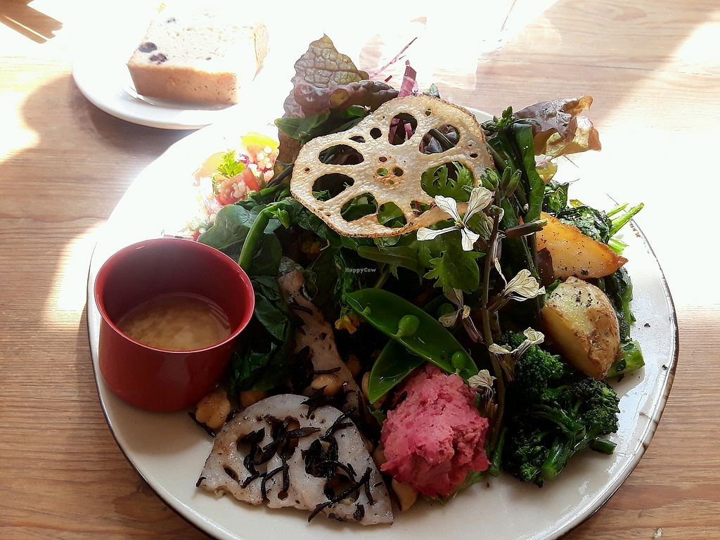 """Photo of Monstyle  by <a href=""""/members/profile/VickiNewMath"""">VickiNewMath</a> <br/>Vegan Meal  <br/> April 8, 2018  - <a href='/contact/abuse/image/83253/382224'>Report</a>"""